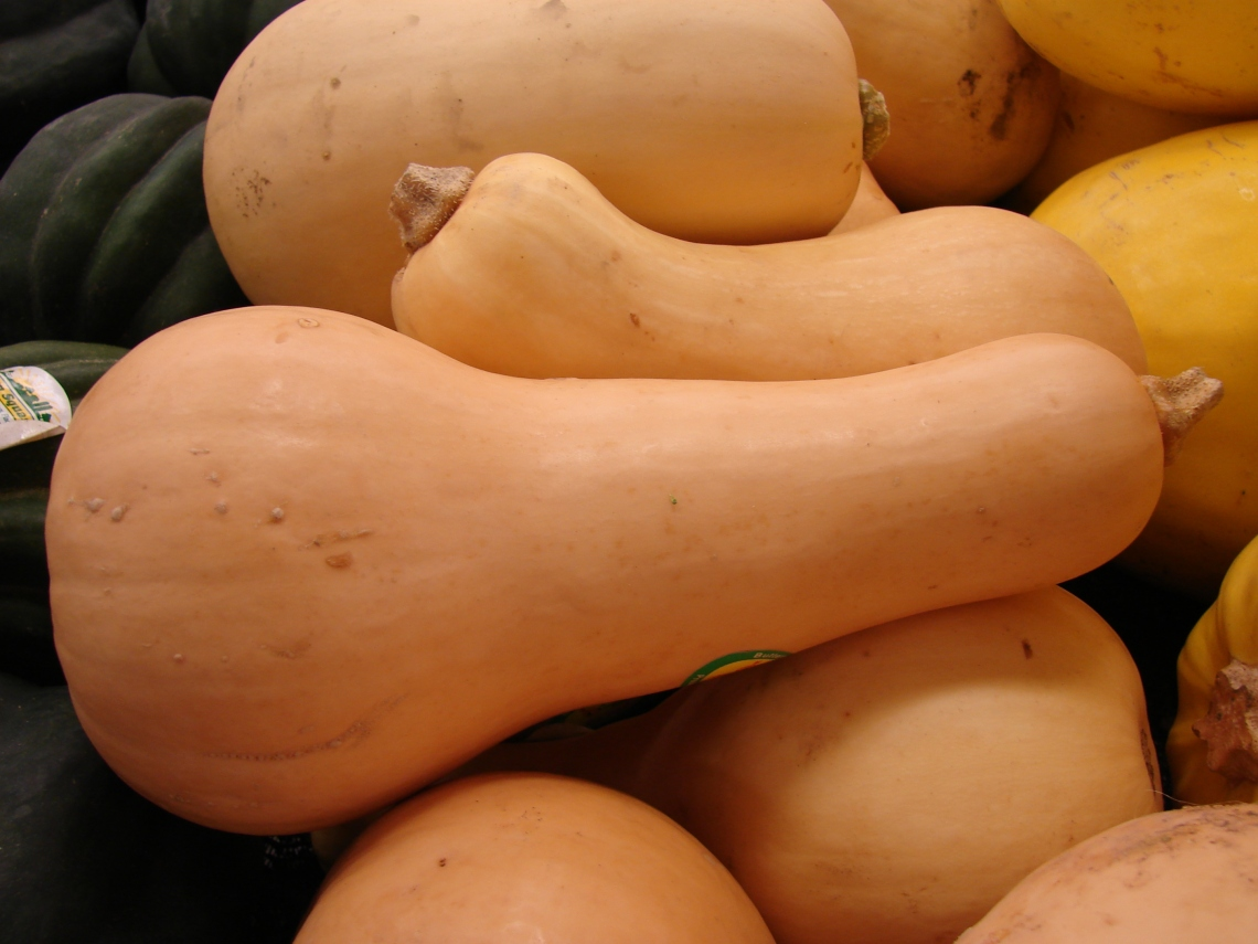 ButternutSquash.jpg